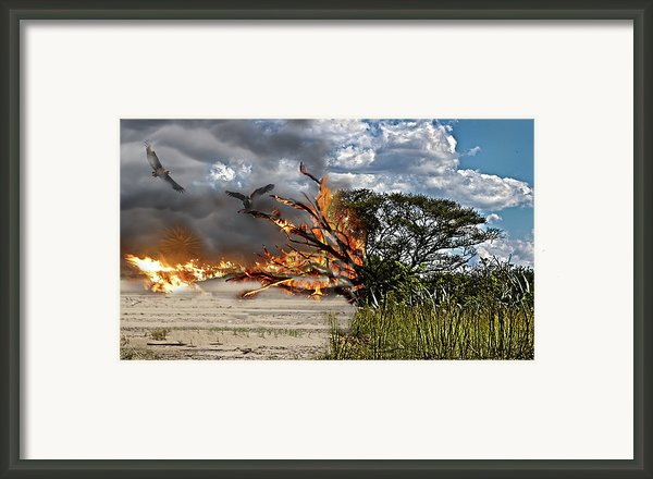 The Destruction Of Our Land Framed Print By Ronel Broderick
