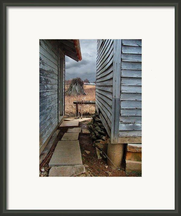 The Dog Trot Framed Print By Julie Dant