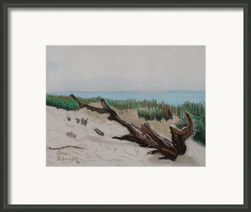 The Drifter Framed Print By Dana Schmidt