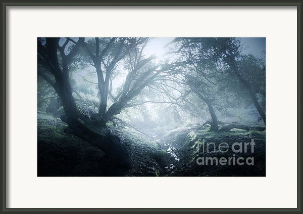 The Ents Are Going To War Framed Print By Kyle Walker