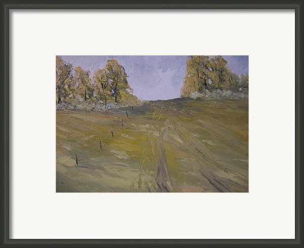 The Fence Row Framed Print By Dwayne Gresham