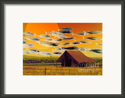 The Fish Farm 5d24404 Framed Print By Wingsdomain Art And Photography