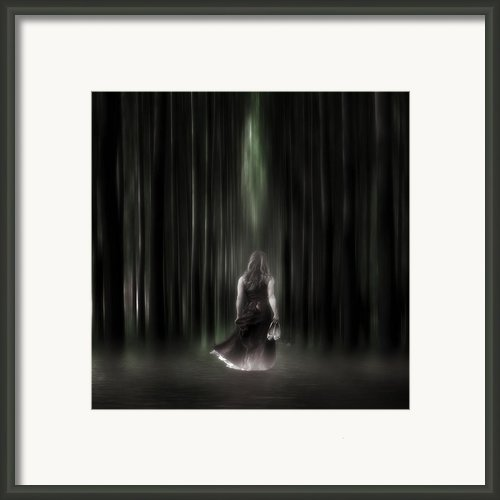 The Forest Framed Print By Joana Kruse
