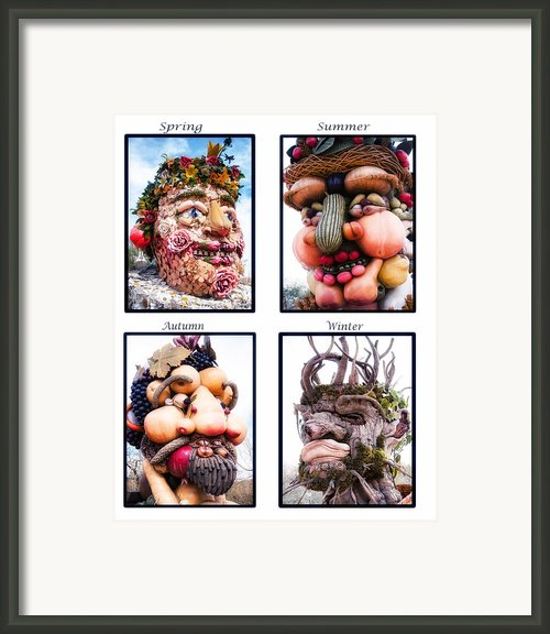The Four Seasons Framed Print By Diane Wood