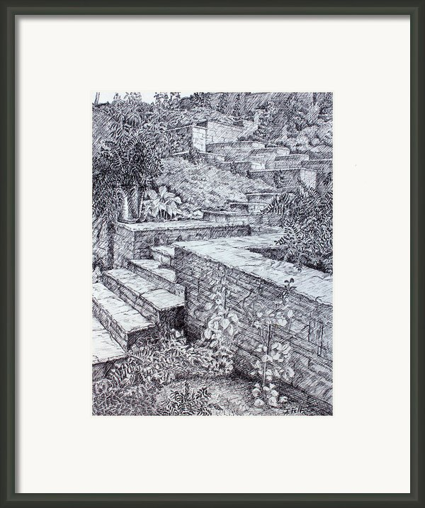 The Garden Wall Framed Print By Janet Felts
