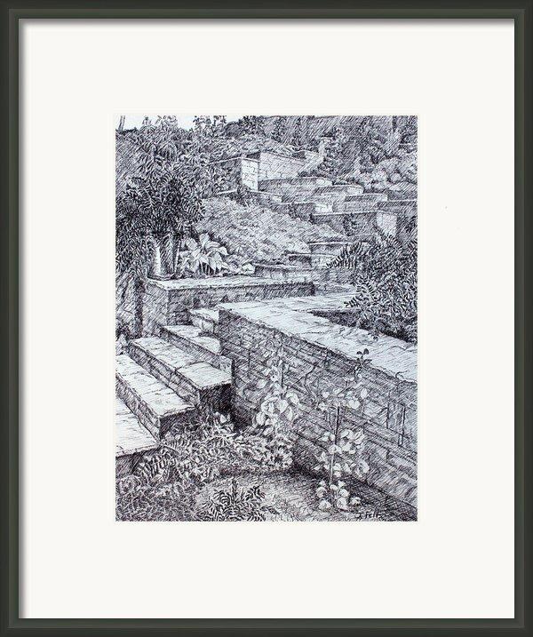 The Garden Wall Framed Print By Janet Felts