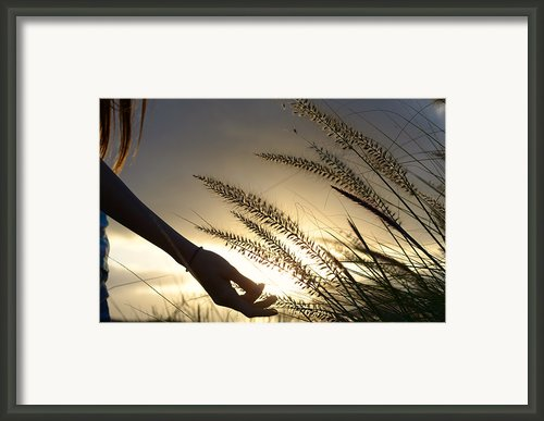 The Good Earth Framed Print By Laura  Fasulo