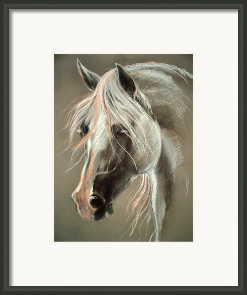 The Grey Horse Soft Pastel Framed Print By Angel  Tarantella