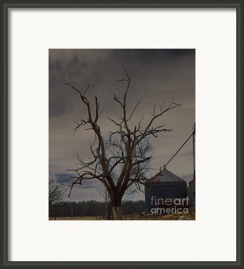 The Haunting Tree Framed Print By Alys Caviness-gober