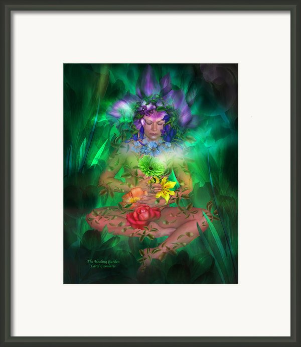 The Healing Garden Framed Print By Carol Cavalaris