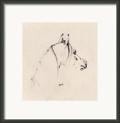 The Horse Sketch Framed Print By Angel  Tarantella