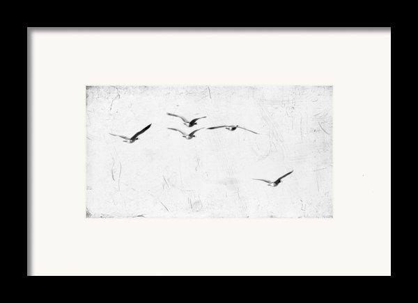 The Leader Framed Print By Rebecca Cozart