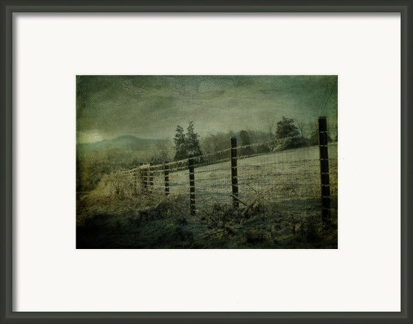 The Morning After Framed Print By Kathy Jennings