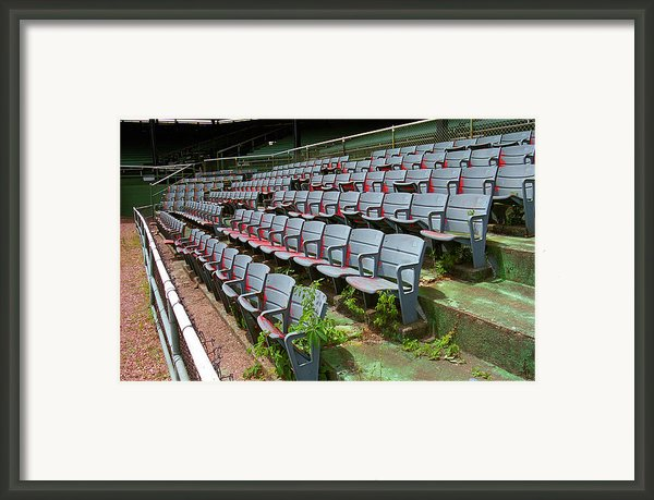The Old Ballpark Framed Print By Frank Romeo