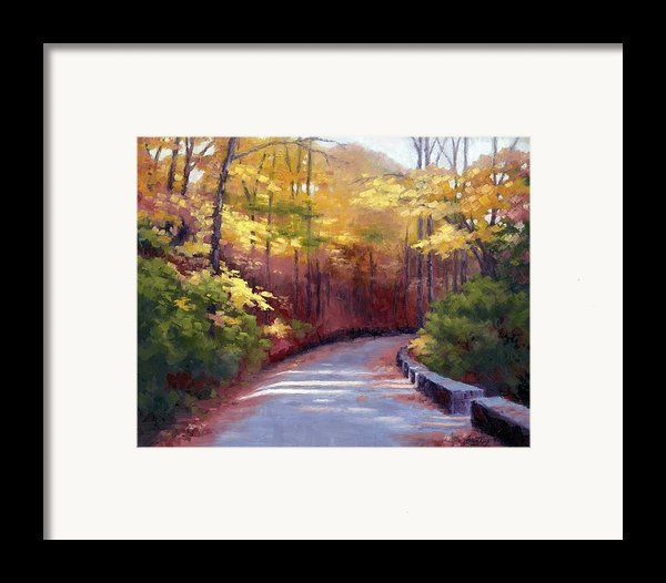 The Old Roadway In Autumn Ii Framed Print By Janet King