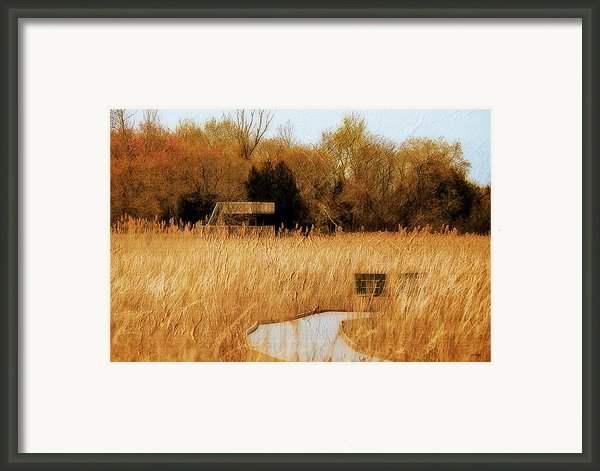 The Overlook Framed Print By Lois Bryan