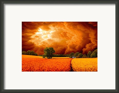 The Peaceful Meadow Framed Print By Dominic Sata