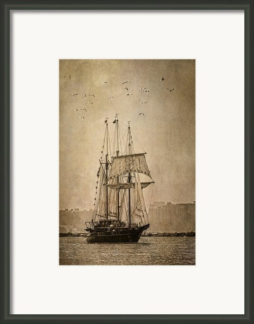 The Peacemaker Framed Print By Dale Kincaid