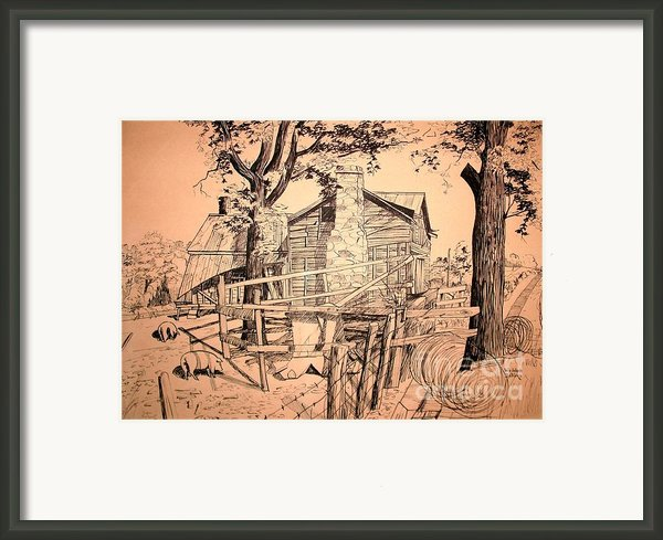 The Pig Sty Framed Print By Kip Devore