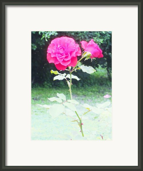 The Red Symbol Of A Dream Framed Print By Guy Ricketts