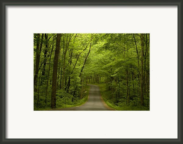 The Road Less Travelled Framed Print By Andrew Soundarajan