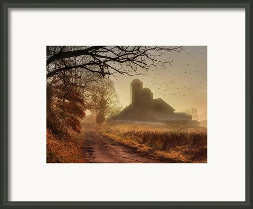 The Road To Amish Country Framed Print By Lori Deiter