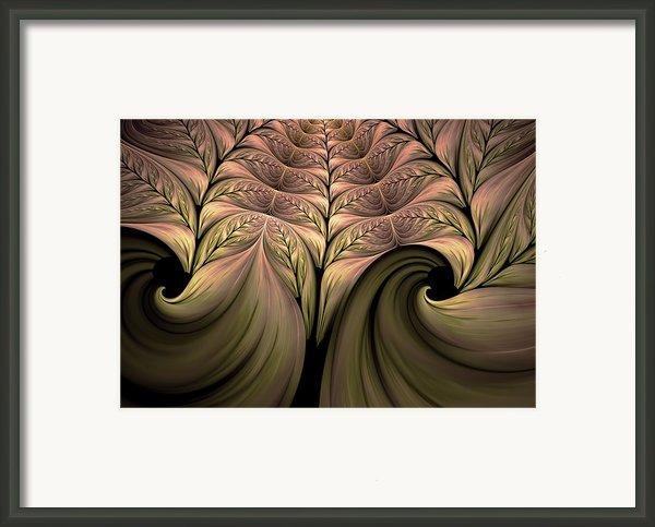 The Secret World Of Plants Abstract Framed Print By Zeana Romanovna