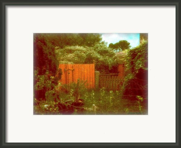 The Side Yard Framed Print By Yomamabird Rhonda