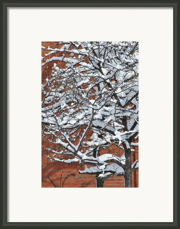 The Snow And The Wall Framed Print By Frederico Borges