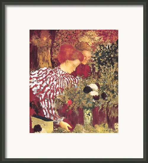 The Striped Blouse Framed Print By Edouard Vuillard