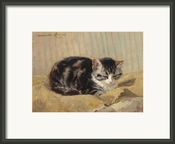 The Tabby Framed Print By Henriette Ronner-knip