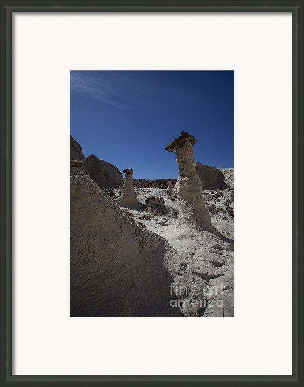 The Toadstools Framed Print By Timothy Johnson