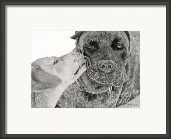 The Unconditional Love Of Dogs Framed Print By Sarahphim Art