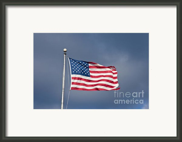 The United States Of America Framed Print By Benjamin Reed