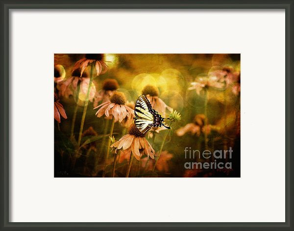 The Very Young At Heart Framed Print By Lois Bryan