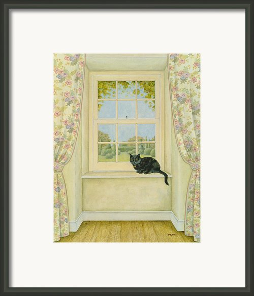The Window Cat Framed Print By Ditz