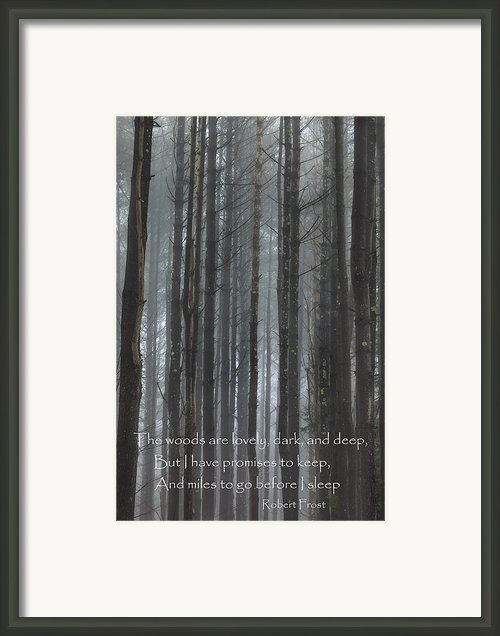 The Woods Framed Print By Bill  Wakeley