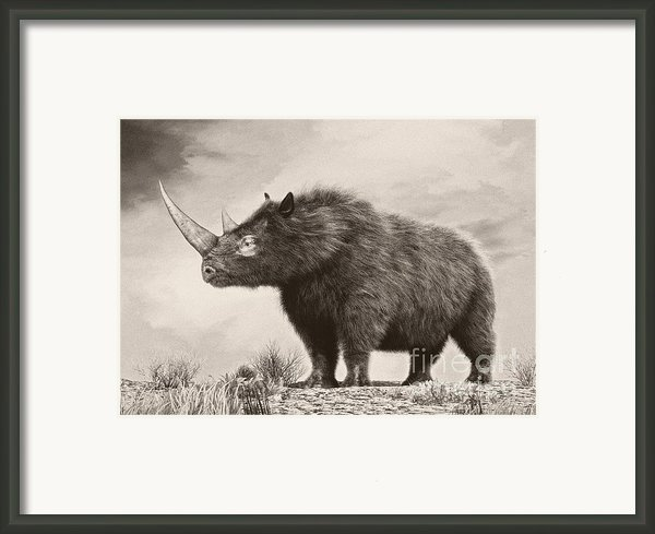 The Woolly Rhinoceros Is An Extinct Framed Print By Philip Brownlow