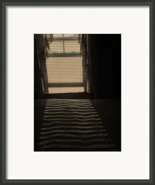 Thin Slices Of Light Framed Print By Guy Ricketts