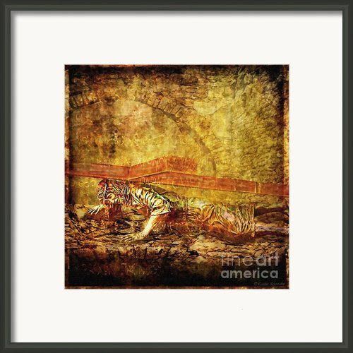 Third Fall Via Dolorosa 9 Framed Print By Lianne Schneider