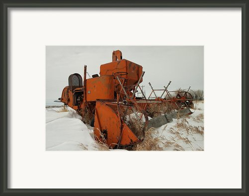 Thrashing The Snow Framed Print By Jeff  Swan
