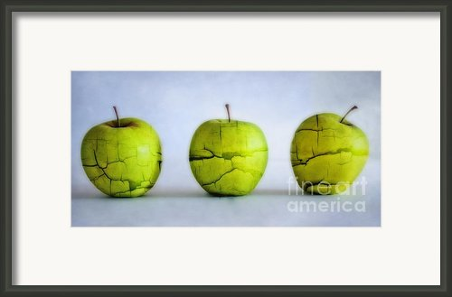 Three Apples Framed Print By Kristin Kreet