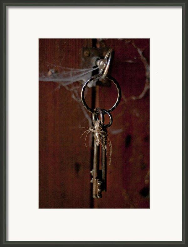 Three Keys Framed Print By Georgia Fowler