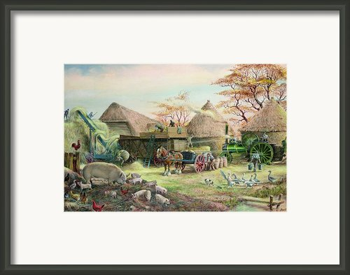 Threshing In Kent Framed Print By Dudley Pout