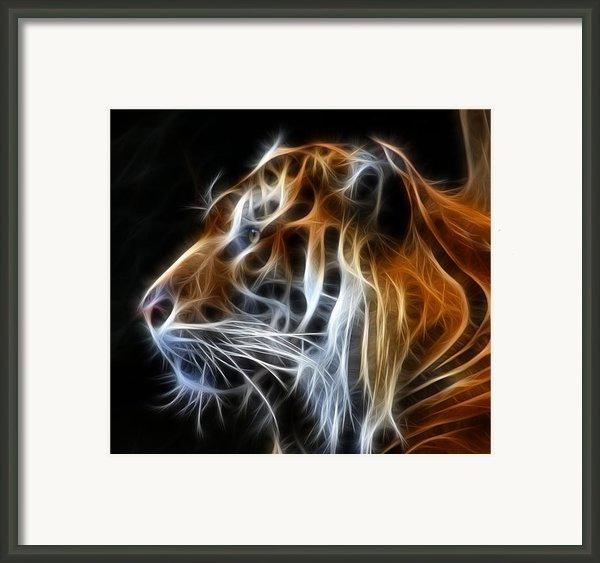 Tiger Fractal Framed Print By Shane Bechler