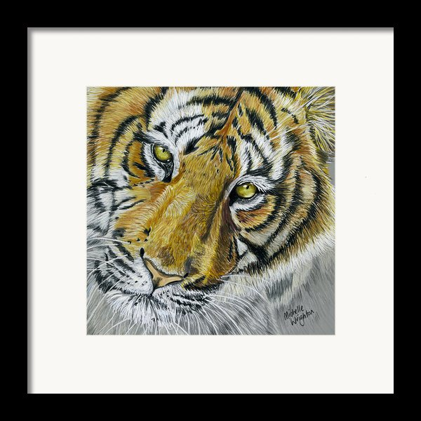 Tiger Painting Framed Print By Michelle Wrighton