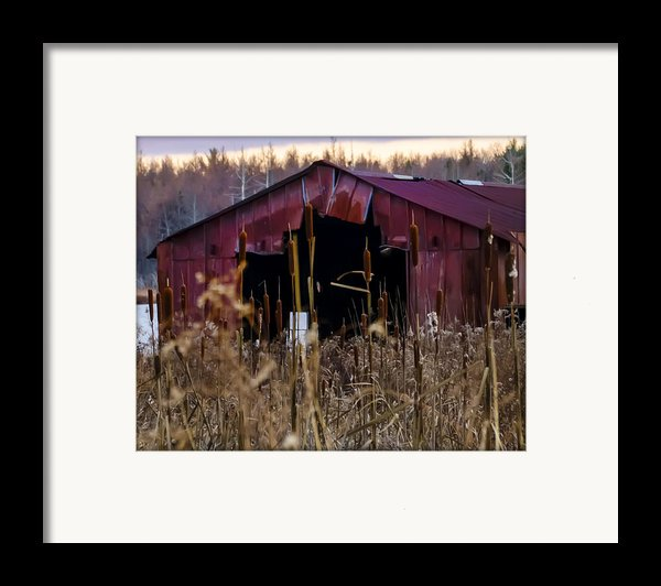 Tin Roof Rusted Framed Print By Bill Cannon