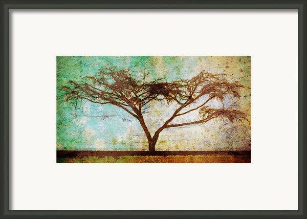 Tonal Curve Framed Print By Brett Pfister