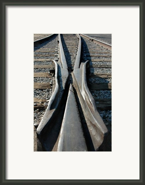 Tracks Framed Print By Dan Holm