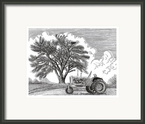 Tractor And Cottonwood Tree Framed Print By Jack Pumphrey